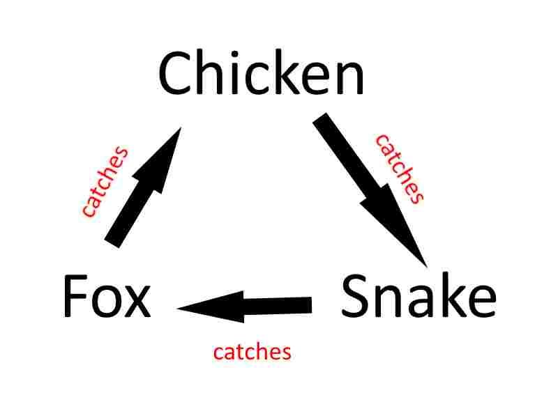 Fox-Chicken-Snake-Catching-Matrix
