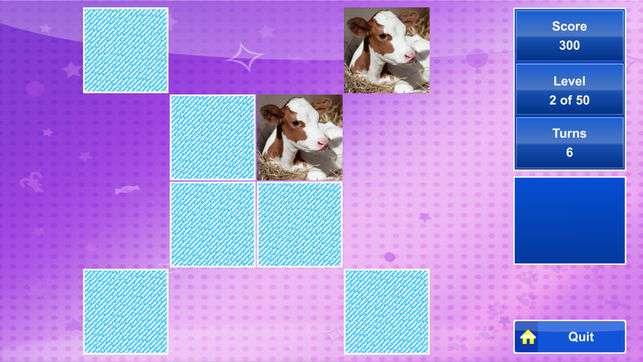memory-original-ravensburger-gamescreen